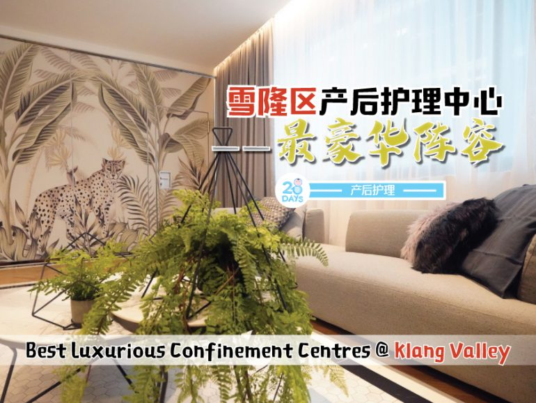 雪隆区最豪华月子中心 The Best Luxurious Confinement Centres @ Klang Valley